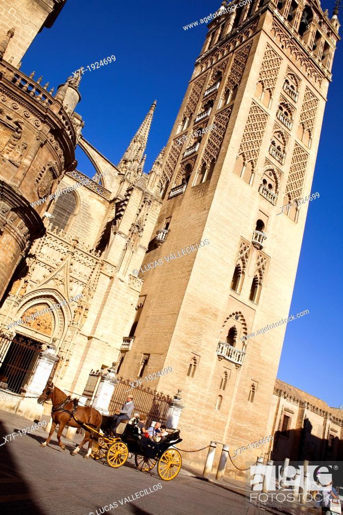 Stock Photo: Cathedral,Giralda tower from Plaza Virgen de los Reyes,Sevilla,Andalucía,Spain.