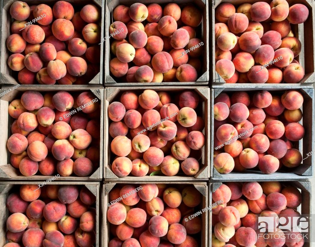 Stock Photo: Peaches , Owings Maryland.