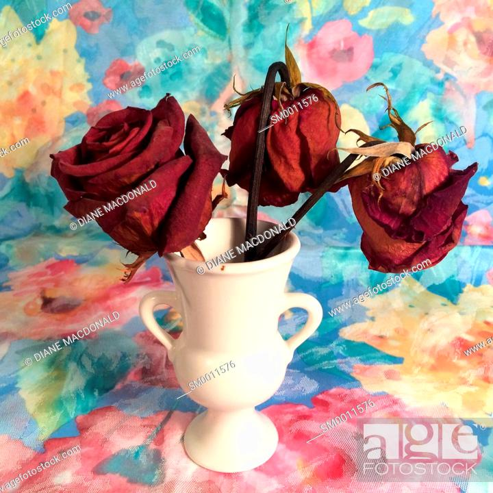 Stock Photo: Three dried red roses in a vase.
