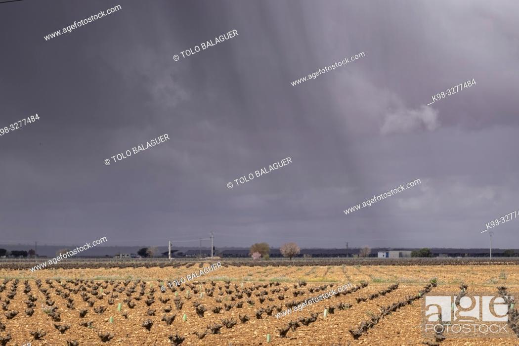 Stock Photo: tormenta sobre una viña, Campo de Criptana, provincia de Ciudad Real, Castilla-La Mancha, Spain.