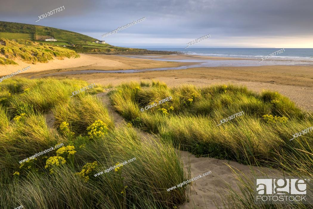 Stock Photo: The sand dunes at Croyde Bay on the North Devon Coast, England.