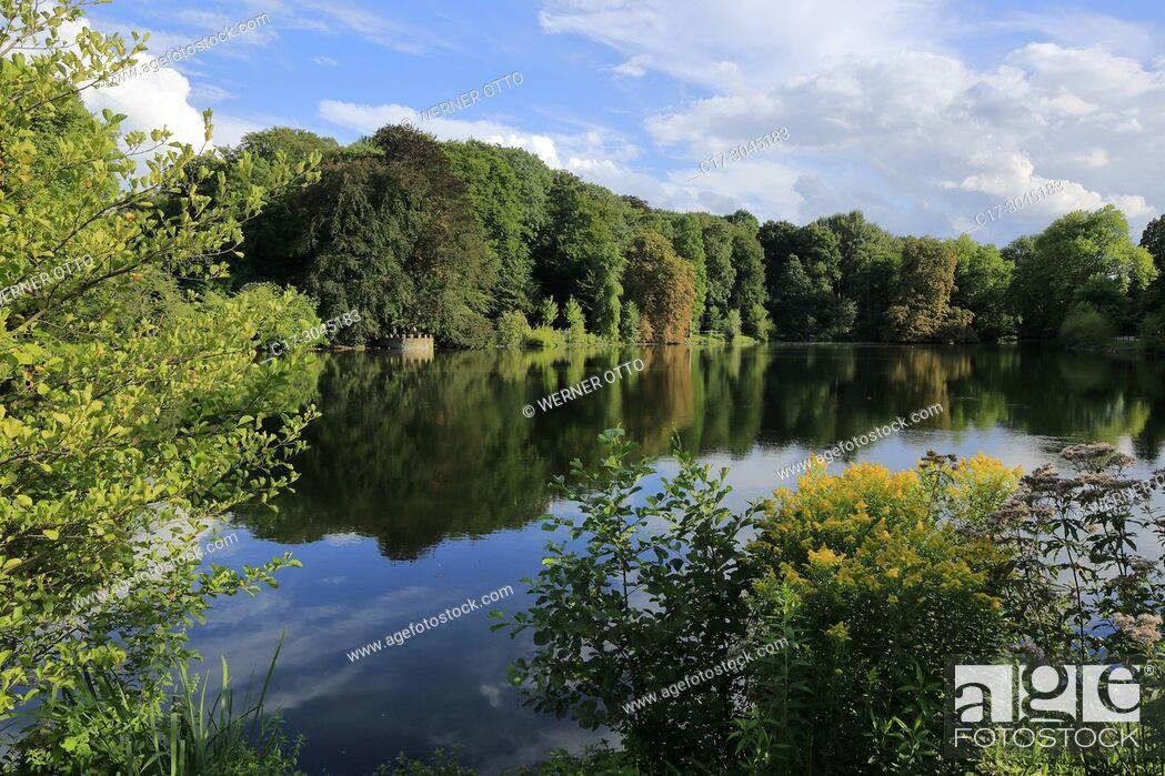 Stock Photo: Dortmund, Bruenninghausen, D-Dortmund, Ruhr area, Westphalia, North Rhine-Westphalia, NRW, D-Dortmund-Bruenninghausen, Botanical Garden Rombergpark.