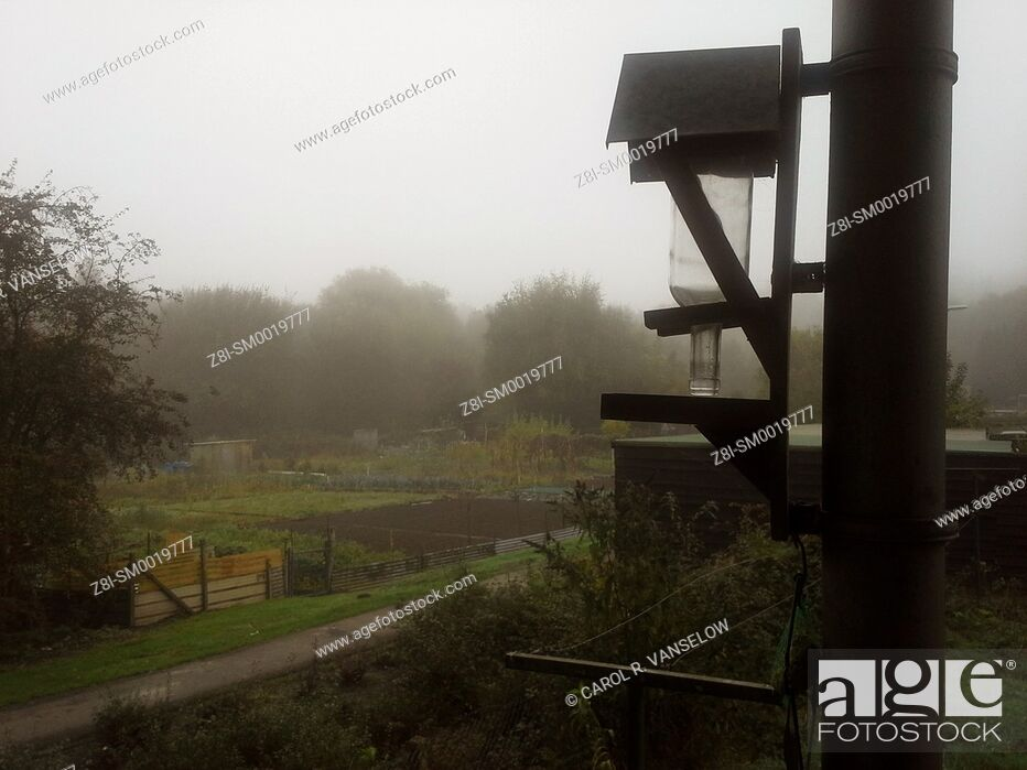 Stock Photo: bird feeder on a foggy day.