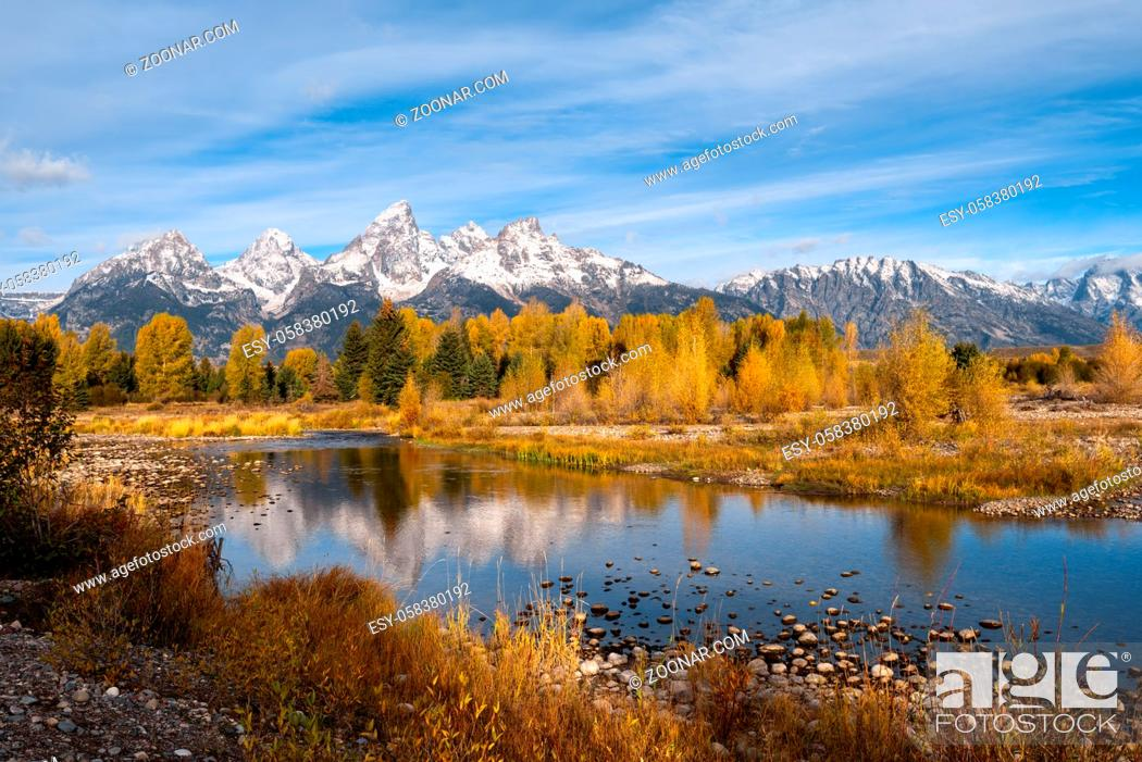 Stock Photo: Autumnal Colours in the Grand Teton National Park.