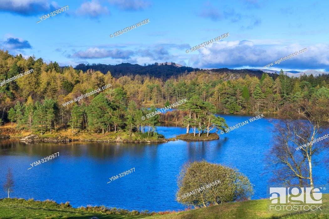 Imagen: The Tarns, Tarn Hows near Coniston, Lake District National Park, Cumbria, England, United Kingdom, Europe.