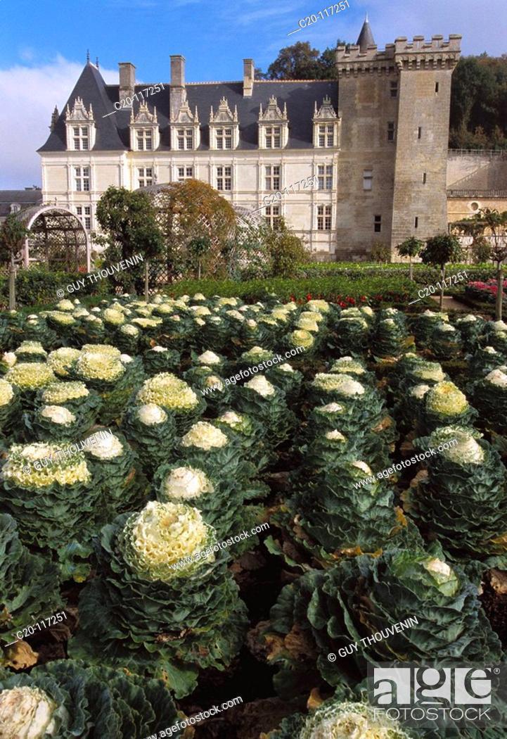 Stock Photo: Château de Villandry. Indre-et-Loire, France.