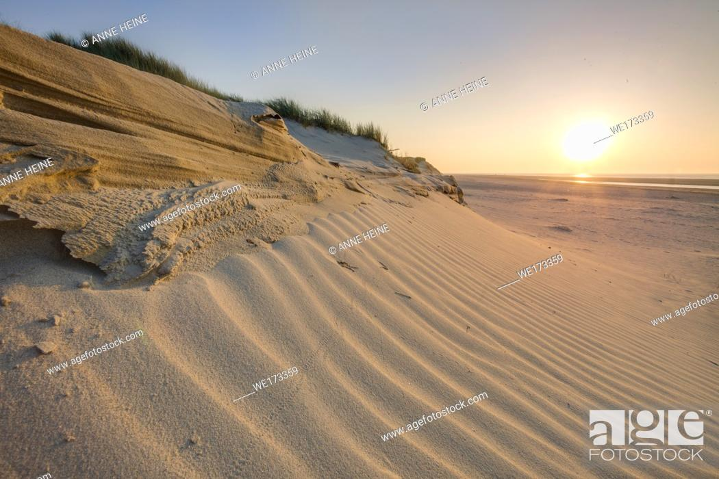 Stock Photo: Wind shaped sand ripples on a Dune on the Island Baltrum in the North Sea, Ostfriesland, Germany.