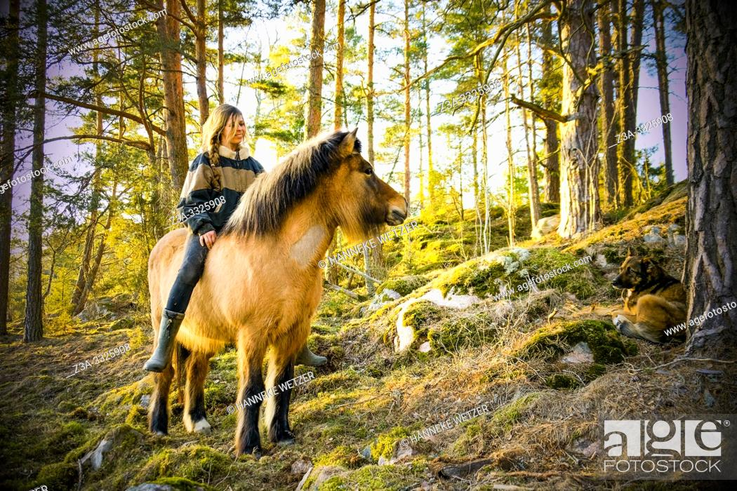 Stock Photo: Girl on a horse in Swedish nature.