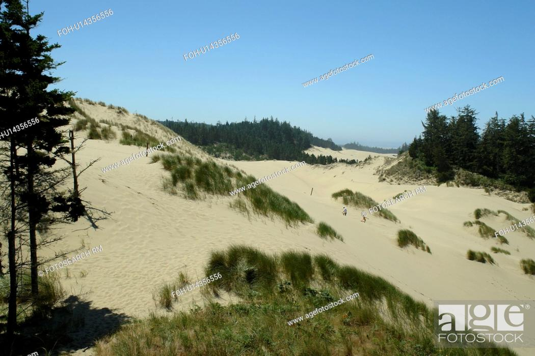 Stock Photo: Reedsport, Florence, OR, Oregon, Pacific Ocean, Pacific Coast Scenic Byway, Rt Route, Highway 101, Oregon Dunes National Recreation Area.