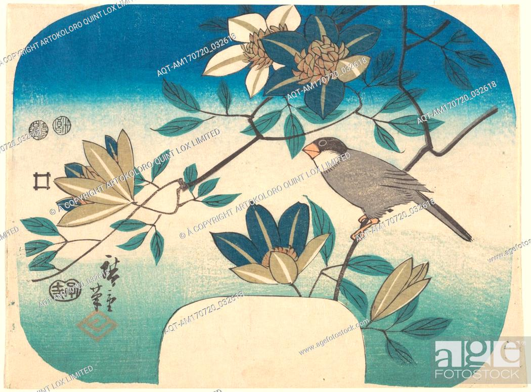 Stock Photo: 歌川広重画 鉄線花に鳥, Clematis and Bird, Edo period (1615–1868), 1852, Japan, Polychrome woodblock print; ink and color on paper, 6 7/8 x 9 in.