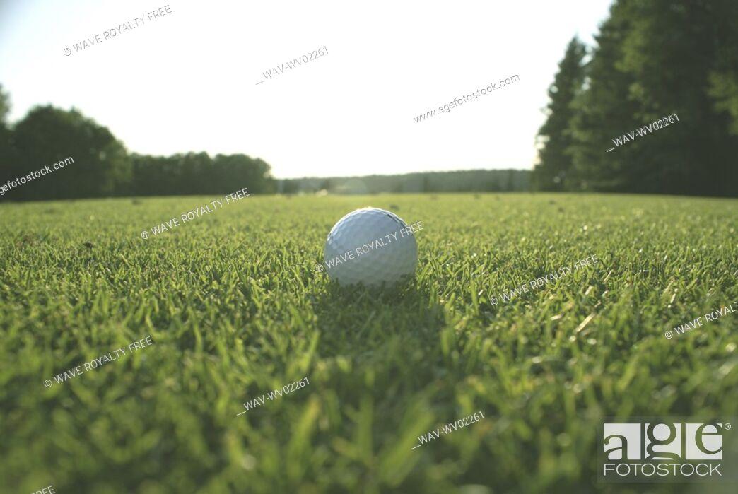 Stock Photo: Golf ball on organic golf course, Canada, Manitoba, Riding Mountain National Park.