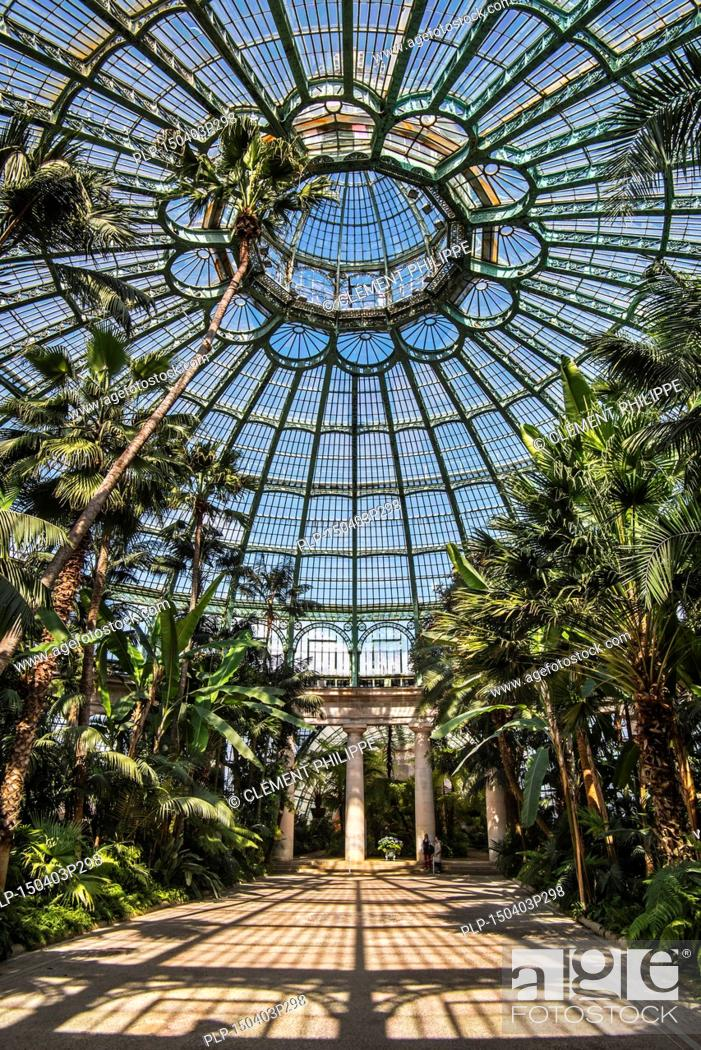 Stock Photo: Palm trees in the Jardin d'hiver / Winter Garden at the Royal Greenhouses of Laeken in Art Nouveau style, designed by Alphonse Balat in the park of the Royal.