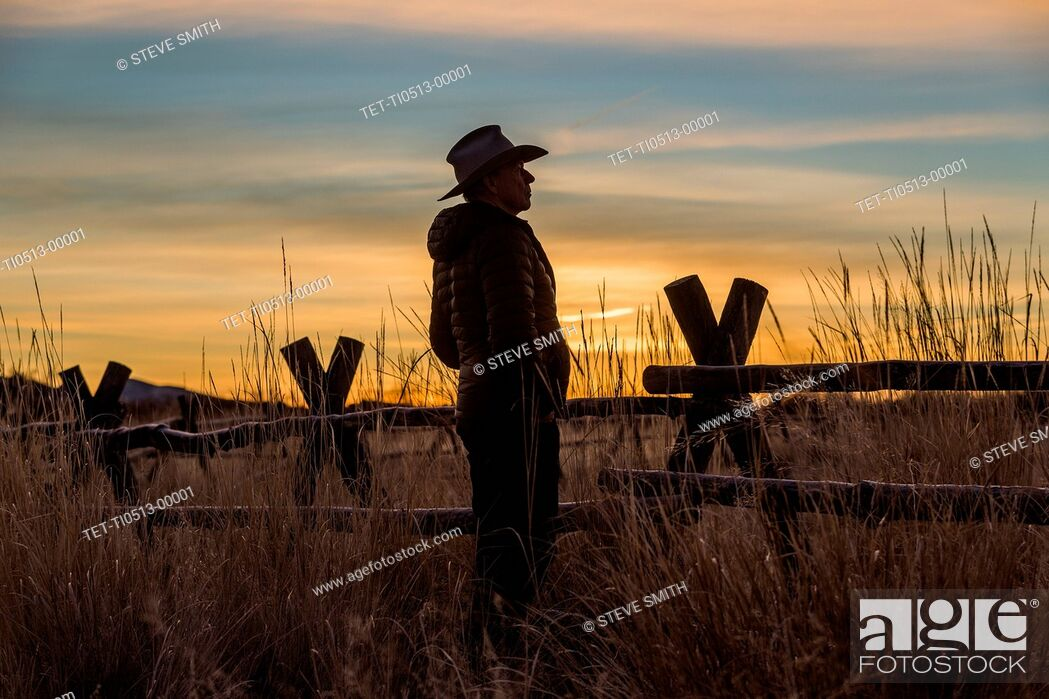 Stock Photo: Silhouette of farmer at sunset.
