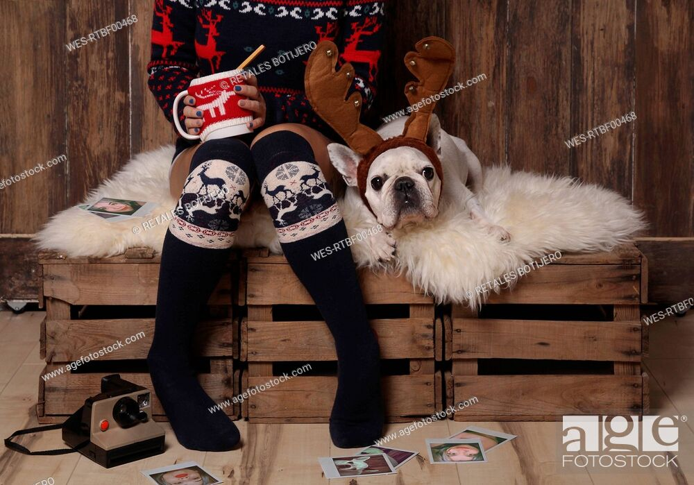 Stock Photo: Young woman wearing winter fashion sitting besides her French bulldog at Christmas time.