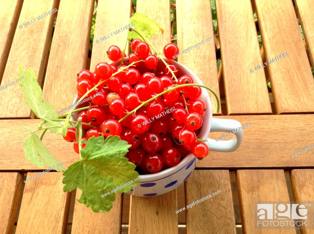 Stock Photo: red currant in cup.