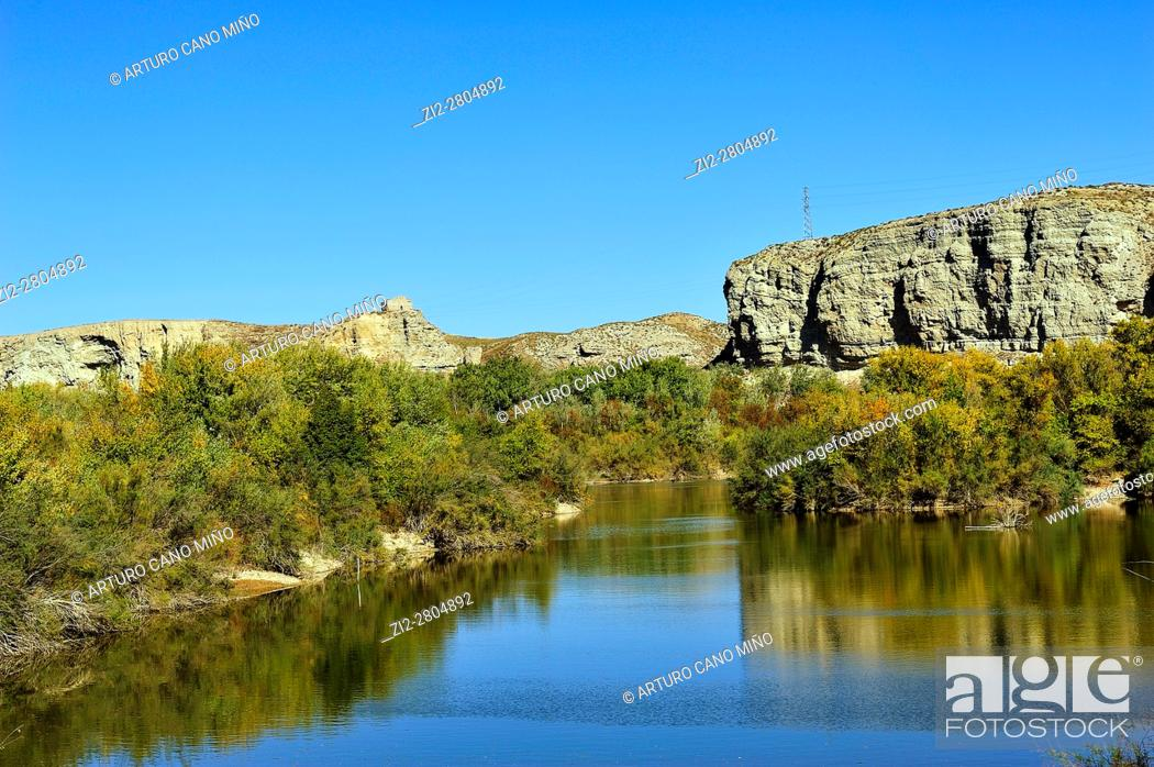 Imagen: The Galacho of Juslibol is a natural site near of the river Ebro. Saragossa, Spain.