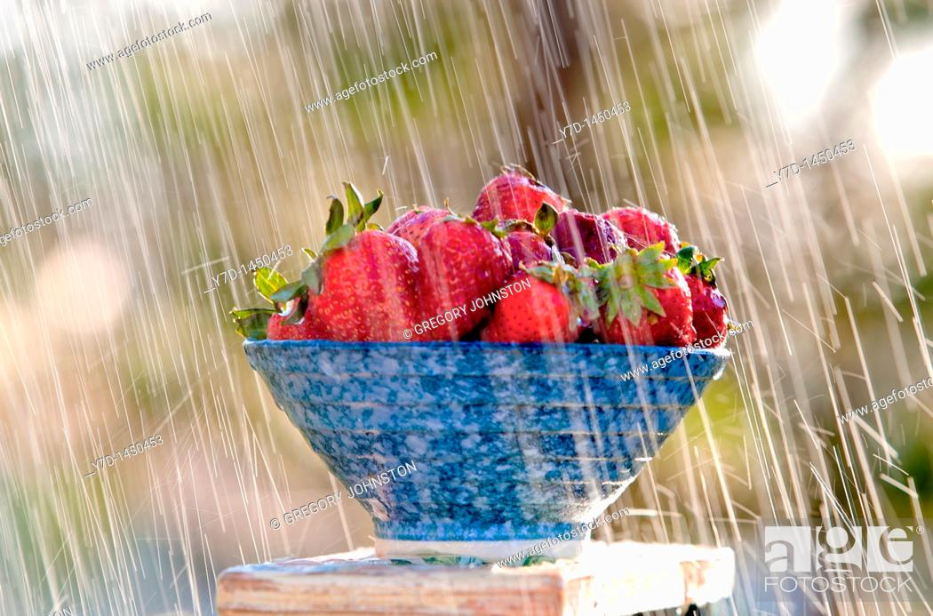 Stock Photo: Rain falling down on a bowl full of strawberries.