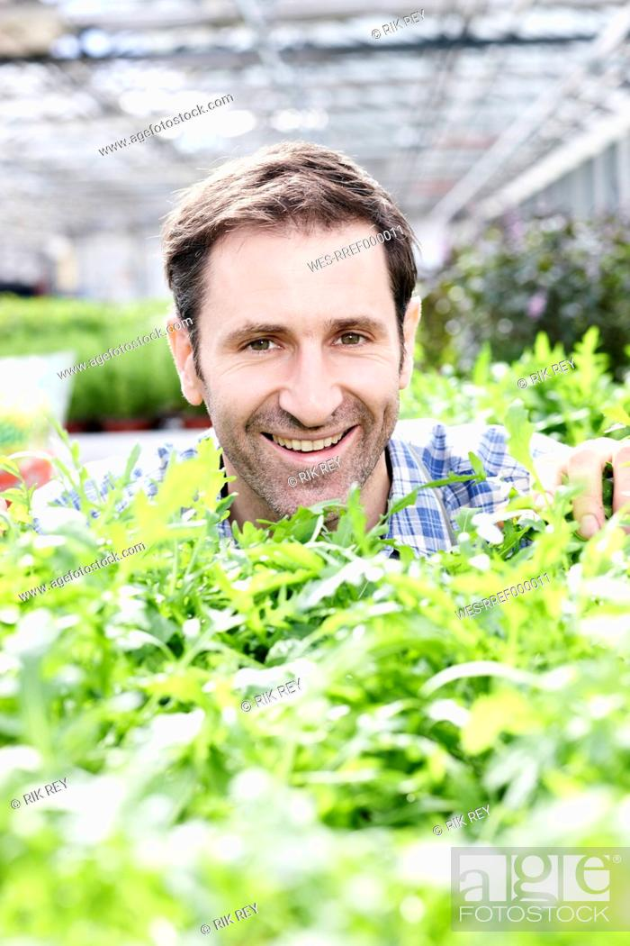 Stock Photo: Germany, Bavaria, Munich, Mature man in greenhouse with rocket plants.