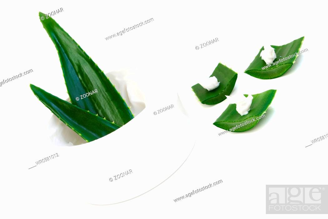 Stock Photo: aloe vera leaves and cream.