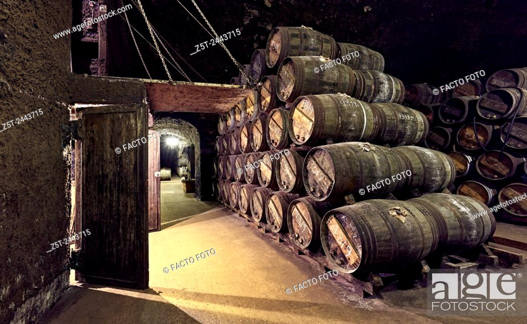 "Stock Photo: """"""""""El calado"""" cellar at R. Lopez de Heredia Viña Tondonia winery. Haro. La Rioja. Spain."