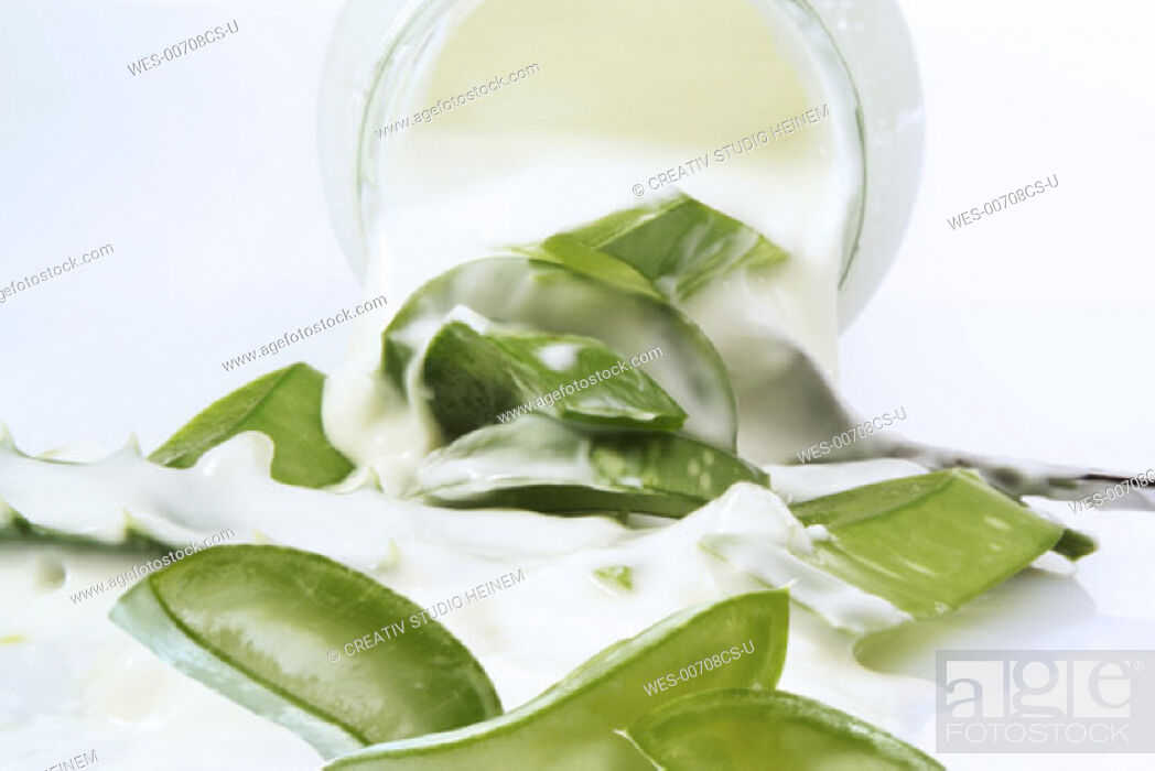 Stock Photo: Aloe Vera Yogurt.