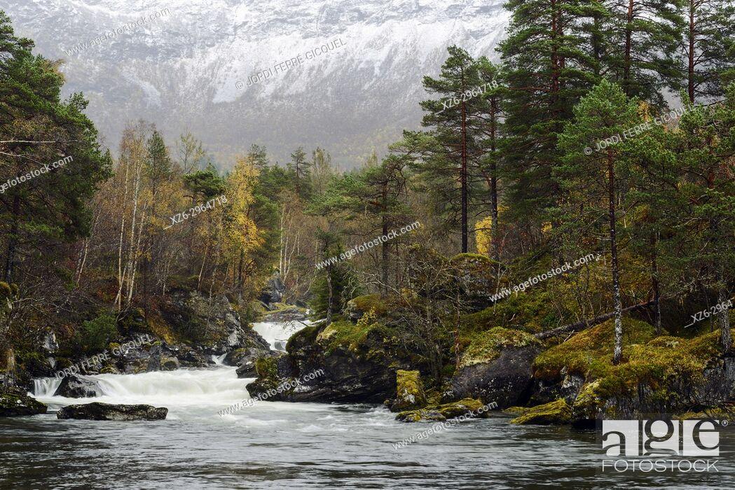 Stock Photo: Gudbrandsjuvet in Valldalen valley in Møre og Romsdal county, Norway, Europe.