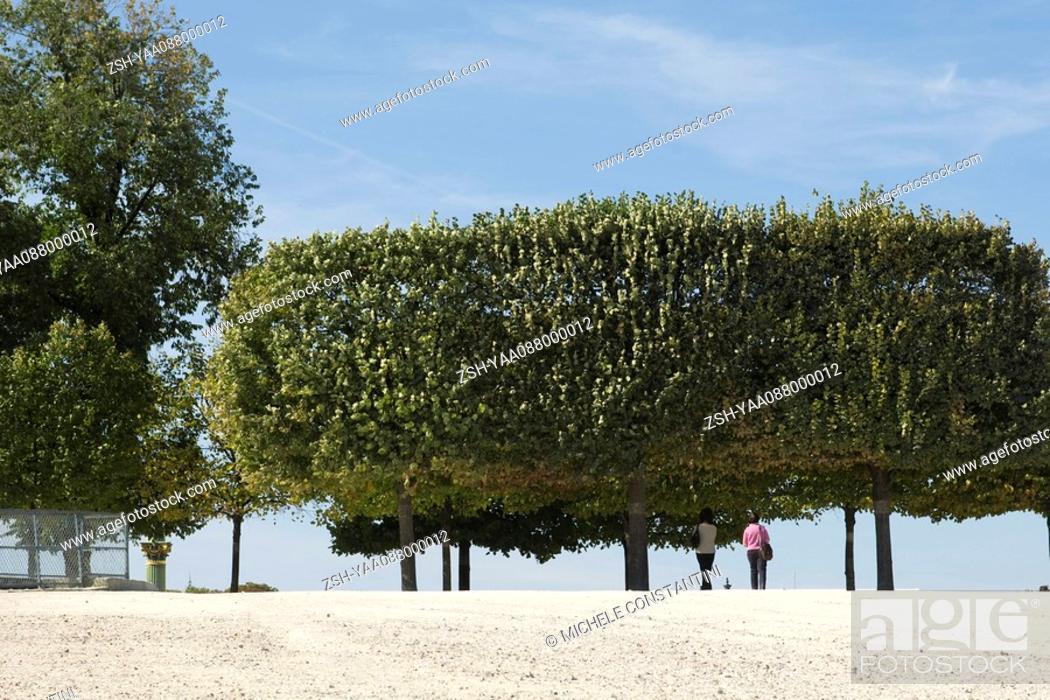 Stock Photo: France, Paris, people walking under trees in park.