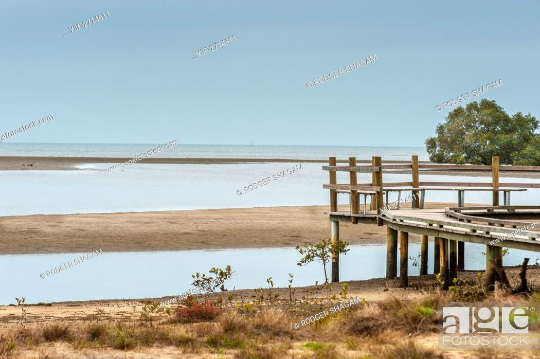 Stock Photo: Old jetty at low tide on the edge of a mangrove swamp.