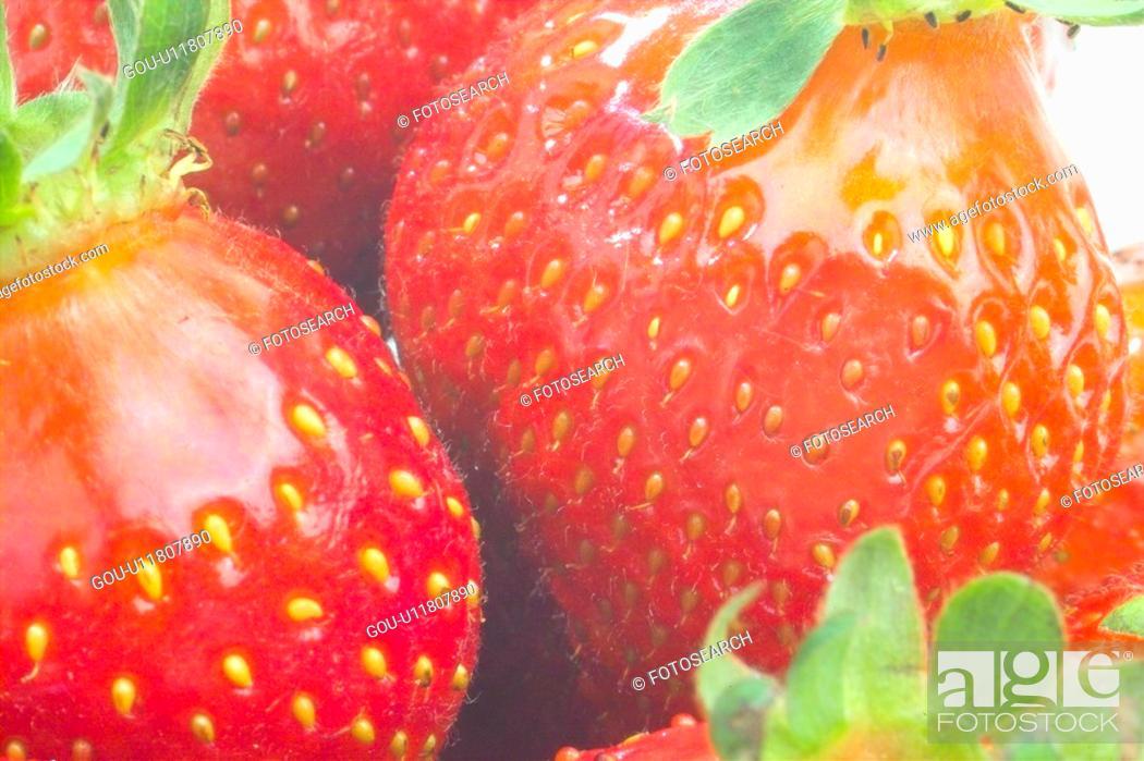 Stock Photo: strawberry, plants, plant, dish, fruit.