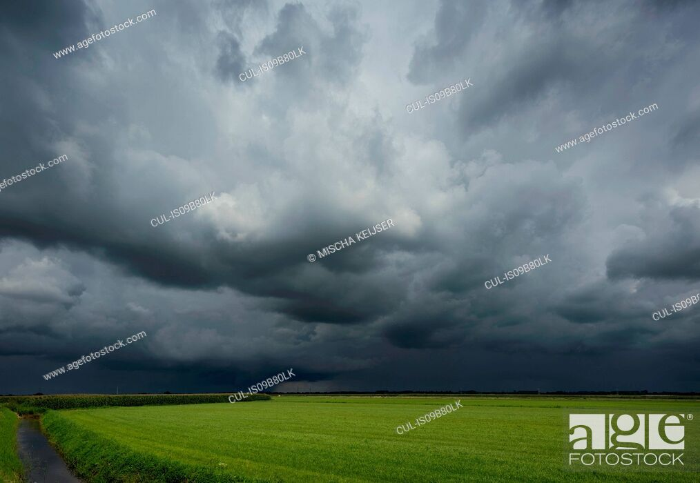 Stock Photo: A thunderstorm over corn and grass fields, Oosterhout, North Brabant, Netherlands.