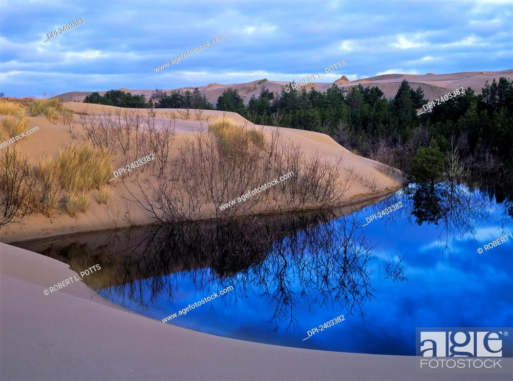 Stock Photo: A seasonal pond reflects the sky in Oregon Dunes National Recreation Area; Lakeside, Oregon, United States of America.