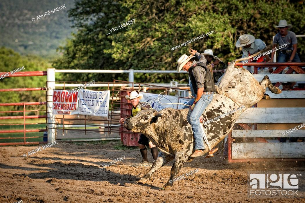 Stock Photo: Massive bull is trying to buck the bullrider off at a rodeo show.