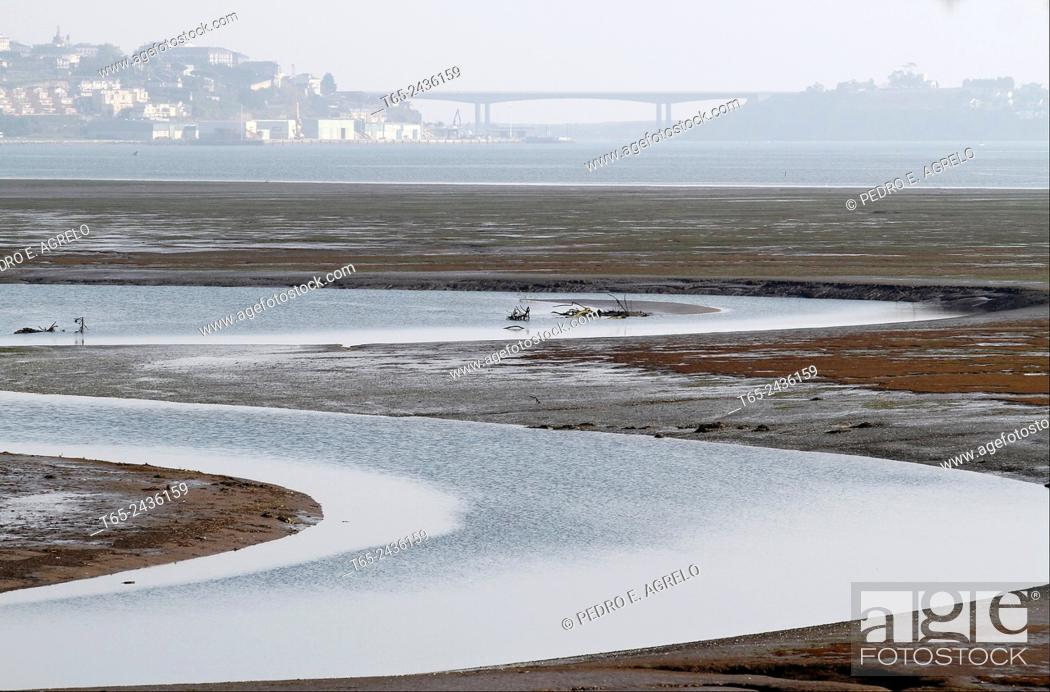 Imagen: Natural marshes of Rio Eo, in Ribadeo i, Lugo. In the background the bridge of Los Santos, linking Asturias d, Galicia i.