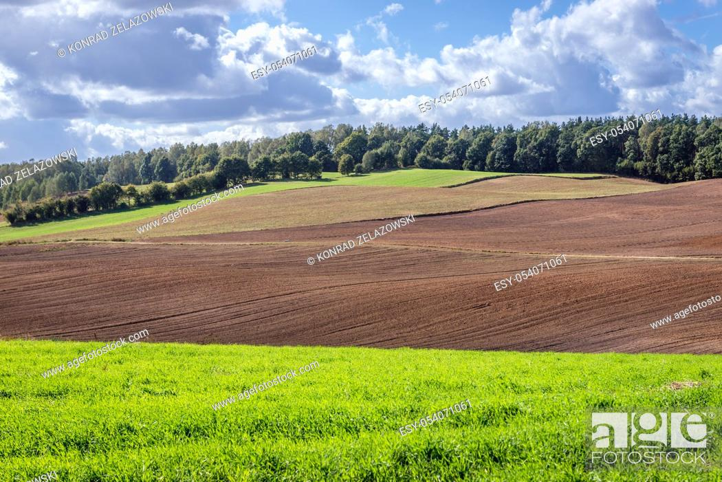 Photo de stock: Rural landscape on the border of Ilawa and Ostroda County of Warmian-Masurian Voivodeship, in northern Poland.