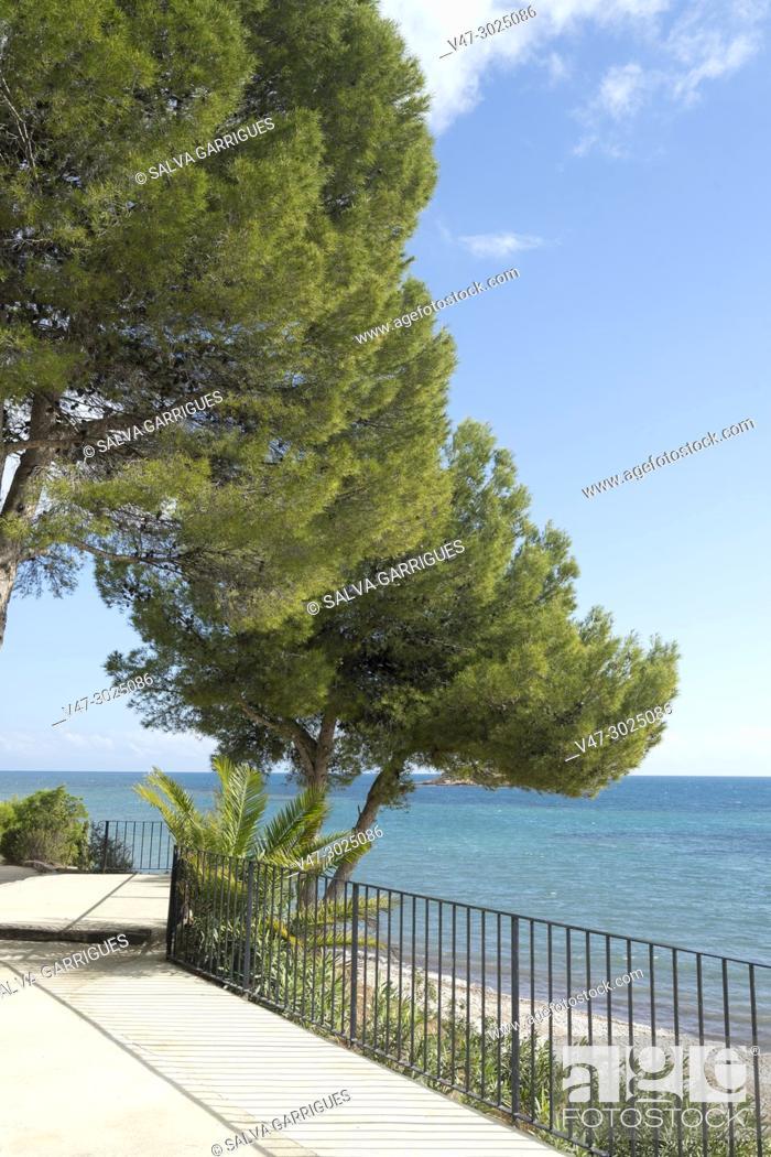 Imagen: Viewpoint of the island of Altea.