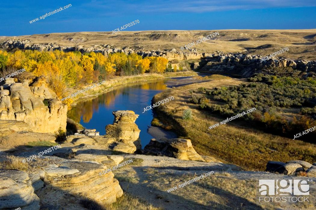 Stock Photo: Sandstone hoodoos in Milk River Valley with fall cottonwoods, Writing-On-Stone Provincial Park, alberta, canada.