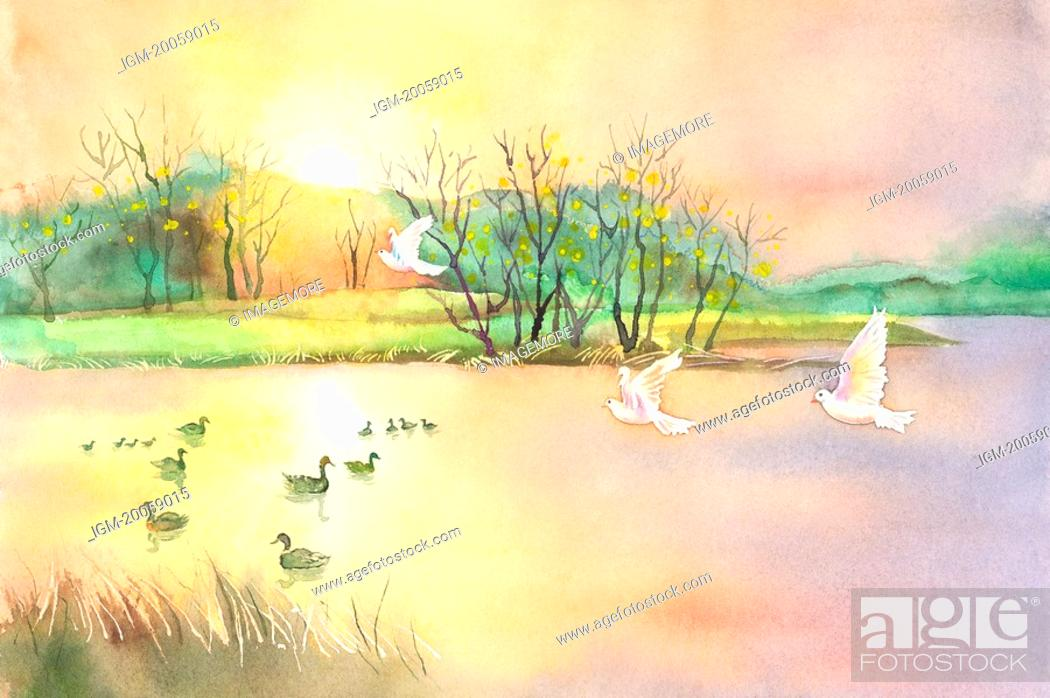 Stock Photo: Animal, Watercolor painting of ducks and birds in nature.