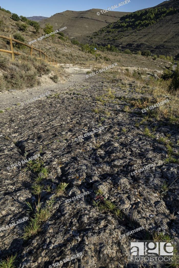 Stock Photo: huellas de dinosaurio, yacimiento de Valdecevillo, Enciso, La Rioja , Spain, Europe.