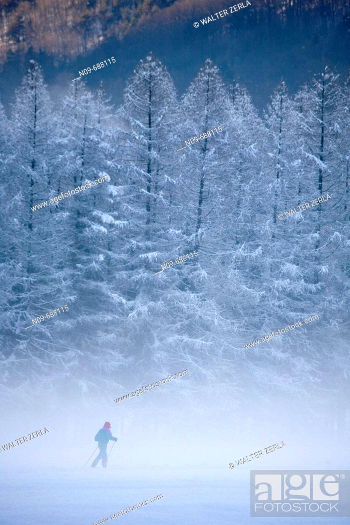Stock Photo: Druogno. Val Vigezzo, Val d'Ossola, Piedmont, Italy.