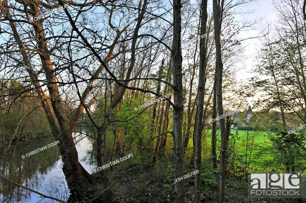 Imagen: Eure river at Nogent-le-Roi, Eure-et-Loir department, Centre-Val de Loire region, France, Europe.