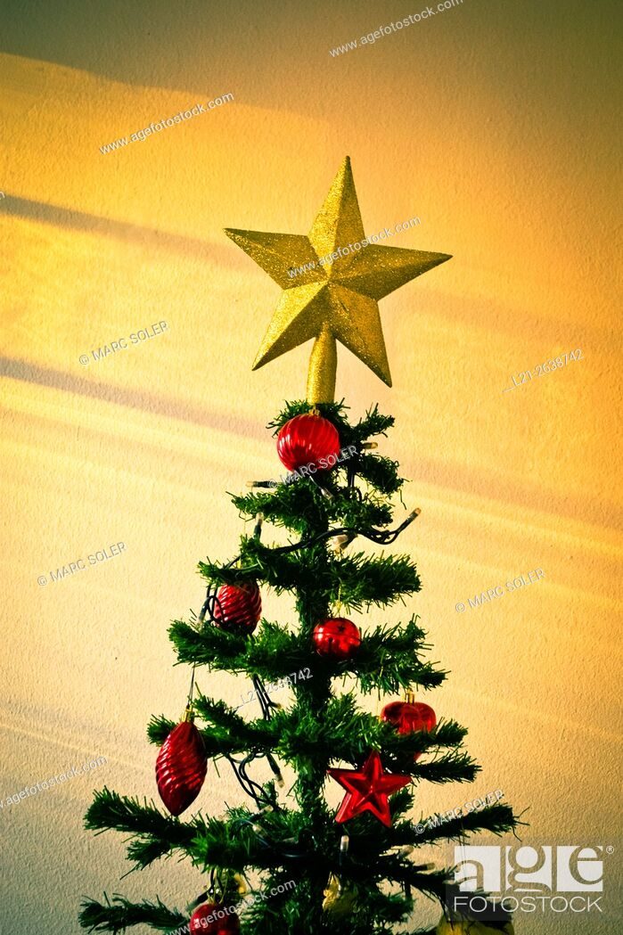 Stock Photo: Christmas tree with a star.