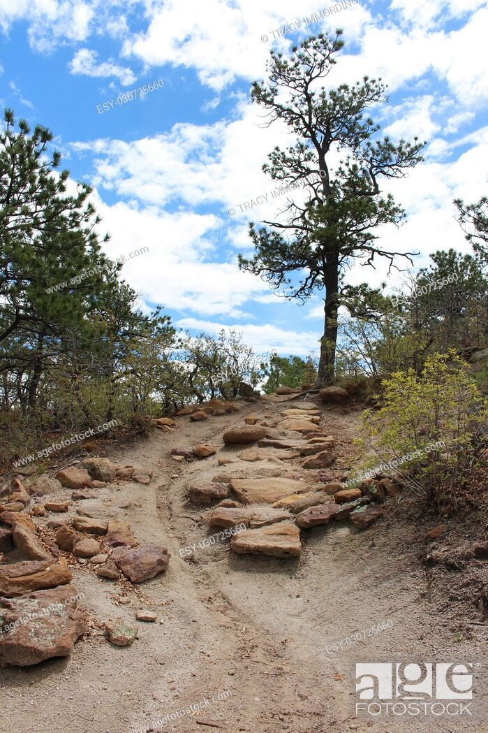 Stock Photo: A dirt hiking trail, strewn with rocks, edged with vegetation, on the uphill ascent at Palmer Park in Colorado Springs, Colorado, USA.