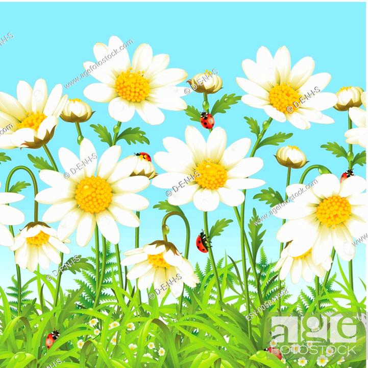 Stock Vector: White flower and green grass.