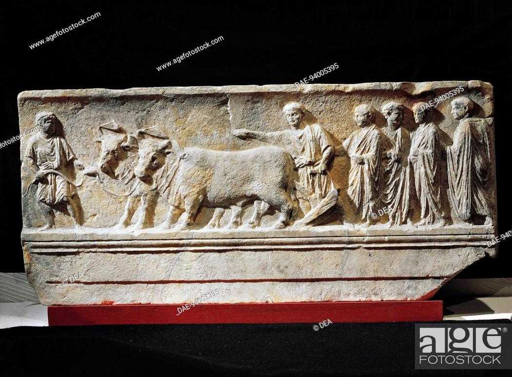 Stock Photo: Italic civilizations, 1st century b.C. Limestone sulcus primigenius relief, representing the ceremony of the foundation of the city of Aquileia.