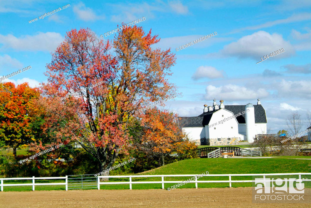 Stock Photo: Northern Indiana agriculture farming scene during the autumn fall colors. The image was taken in La Grange county along the east/west route of highway 20.
