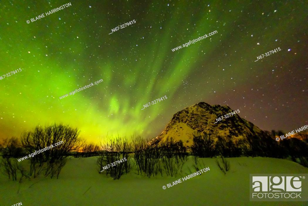 Stock Photo: Northern Lights (Aurora Borealis), Gimsoya Island, Lofoten Islands, Arctic, Northern Norway.