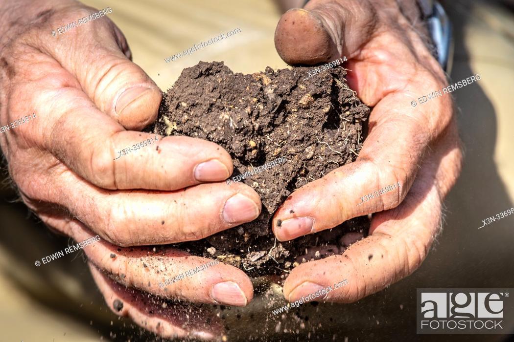 Imagen: Hands break up chunks of soil, Debre Berhan, Ethiopia.