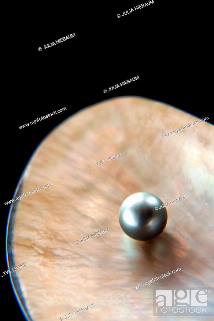 Stock Photo: Precious grey pearl inside shell.