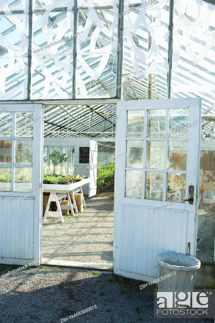 Stock Photo: Greenhouse, view of interior through door.
