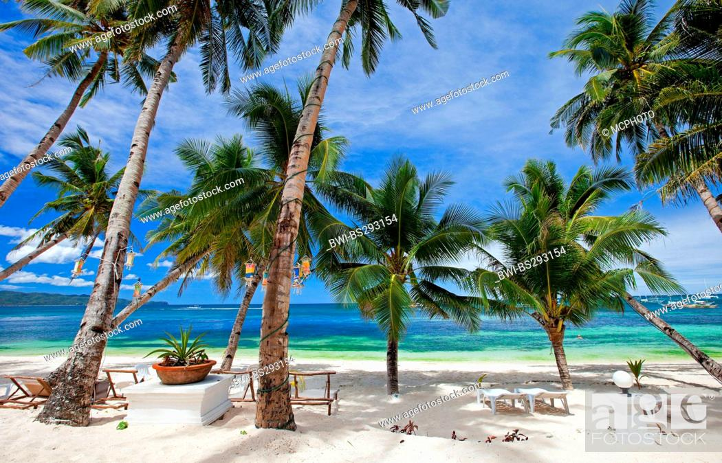 Stock Photo: tropical beach with palm trees, Philippines, Boracay.